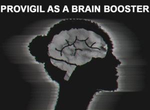 Provigil promotes Wakefulness